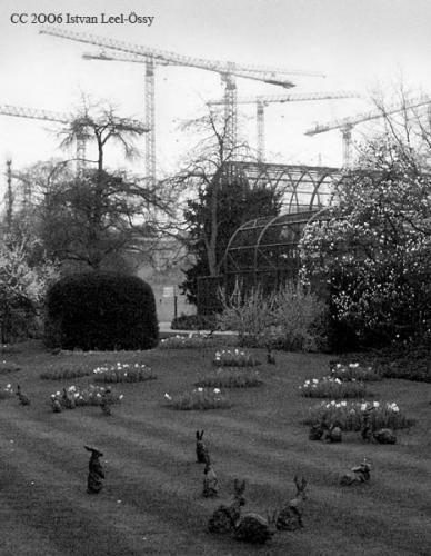 Cranes in Zoo